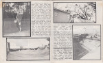 Gulf Coast Skate Review v2n5 - pages 11-12