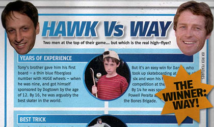 Tony HAwk Danny Way  skate game