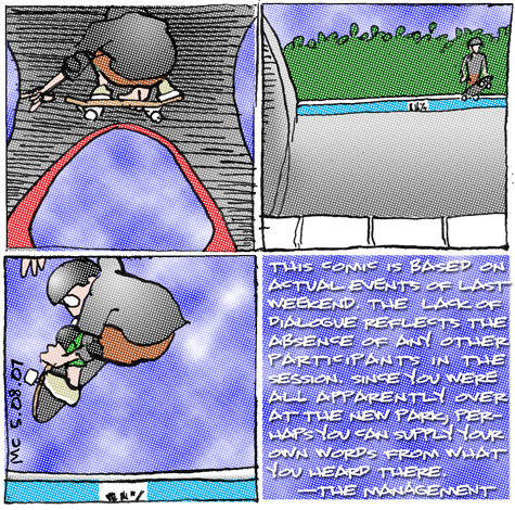 comic about skating alone