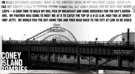 Fly-coney island
