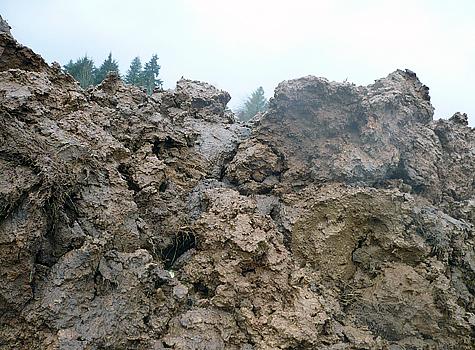 gabriel-mud.jpg