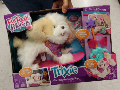 dog-trixie